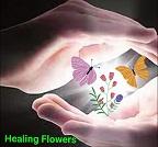 Healing Flouwers